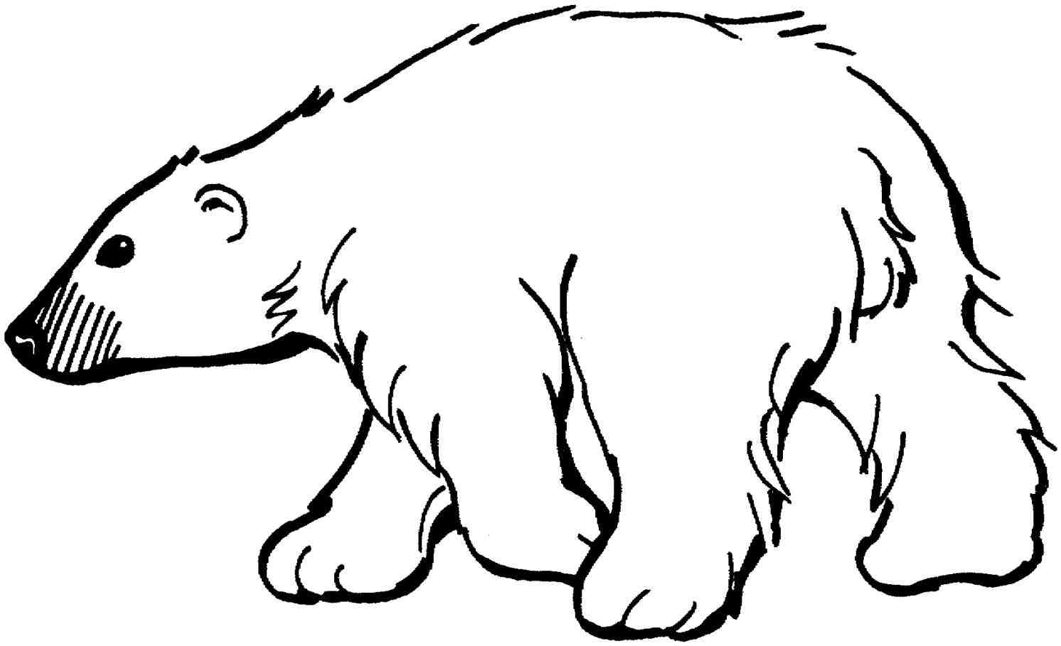 Standing Polar Bear Clipart.