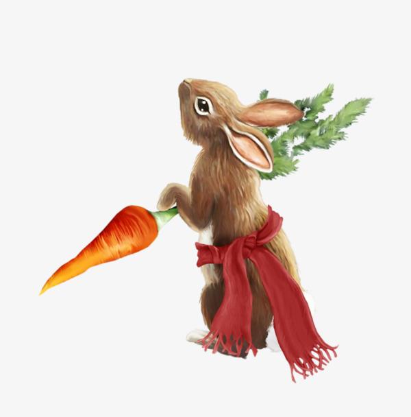 Standing Rabbit, Rabbit Clipart, Rabbit, Radish PNG Image.