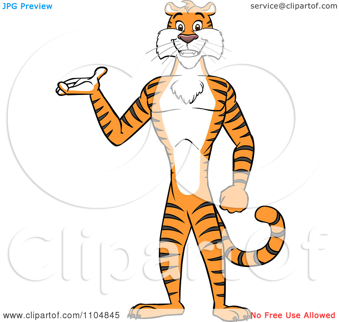 Clipart Happy Tiger Presenting And Standing Upright.