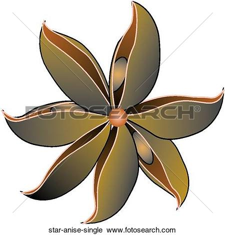 Clipart of Star Anise Single star.