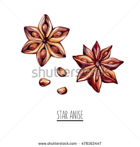 Star Anise. Spice Isolated On White Background. Star Anise With.