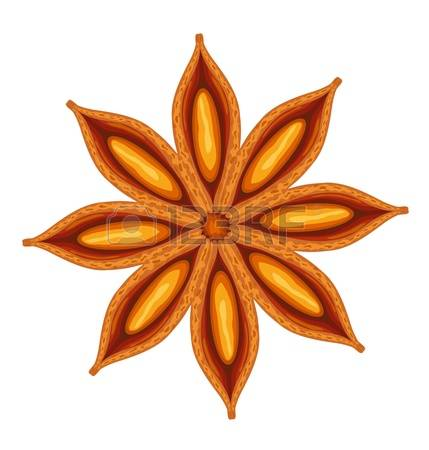1,577 Star Anise Stock Illustrations, Cliparts And Royalty Free.
