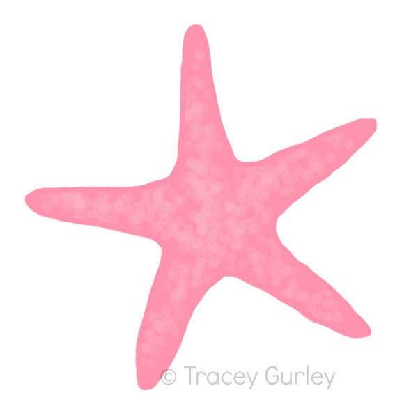 Pink sea shell and star fish clipart.