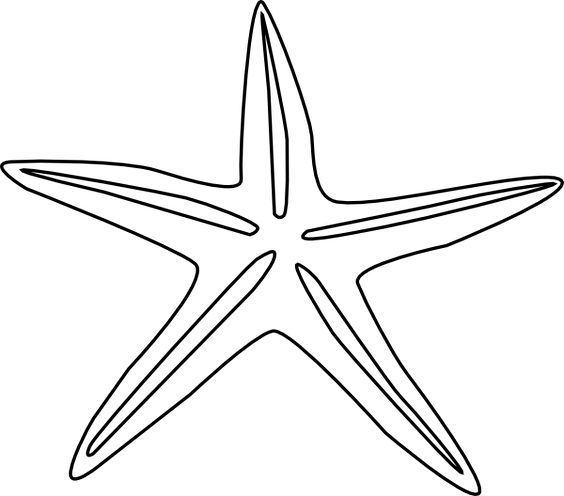 11 Photos of Starfish Outline Drawing.