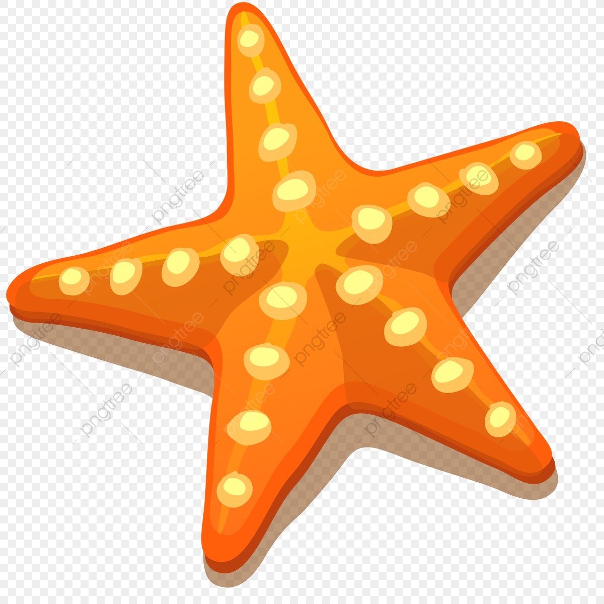 Starfish, Png, Nature PNG and Vector with Transparent.