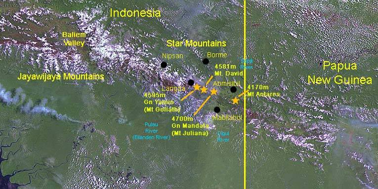 Papua Insects Foundation (Star Mountains).
