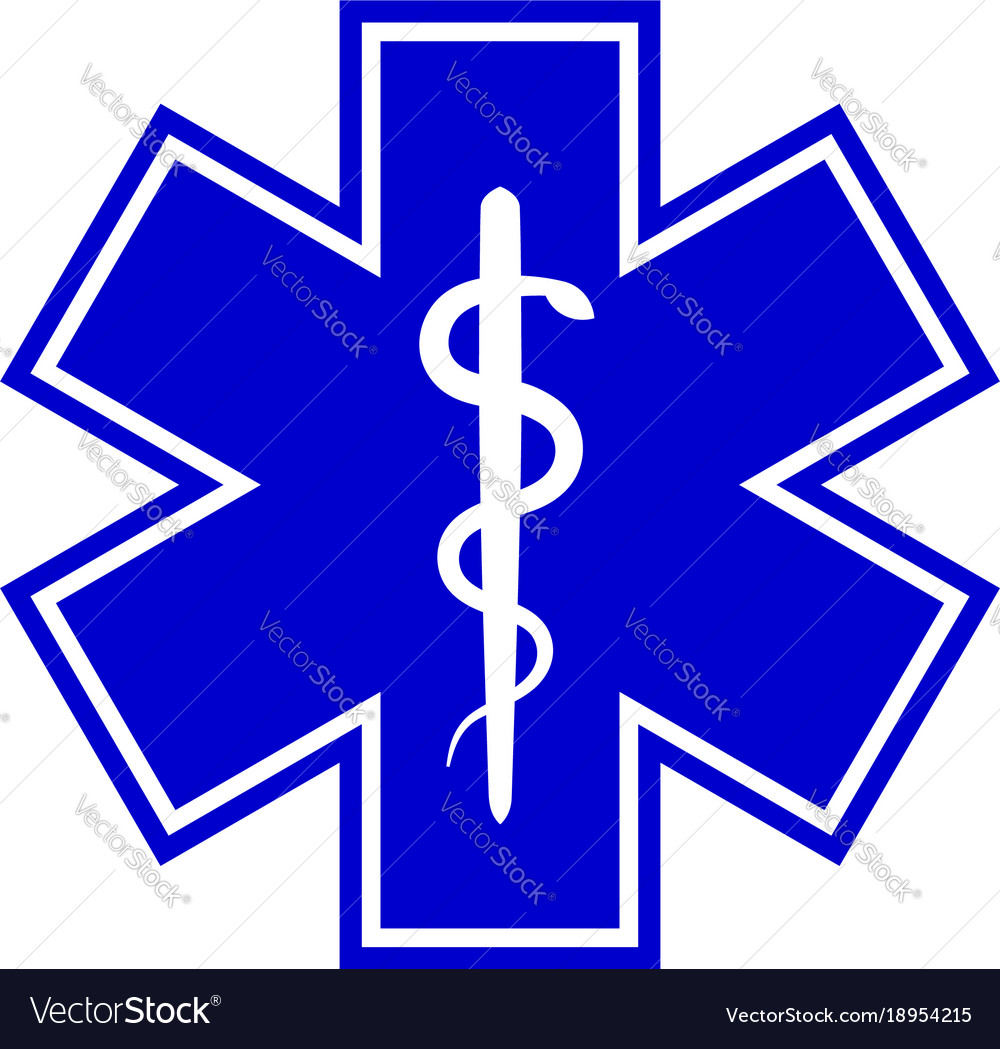 The star of life with the staff of asclepius.