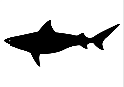 Shark Silhouette Graphics.