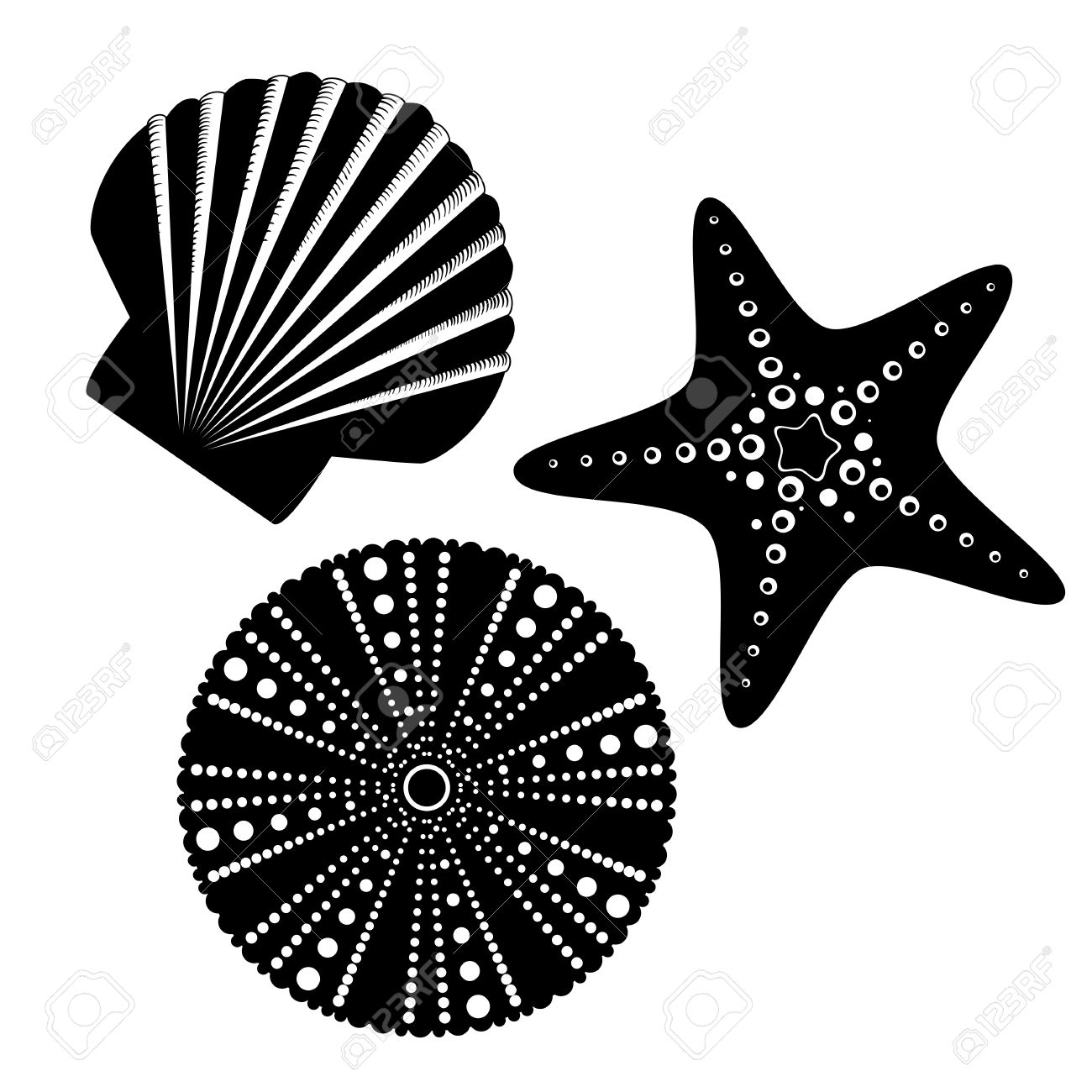 starfish clipart silhouette - Clipground for Starfish Clipart Black And White  579cpg