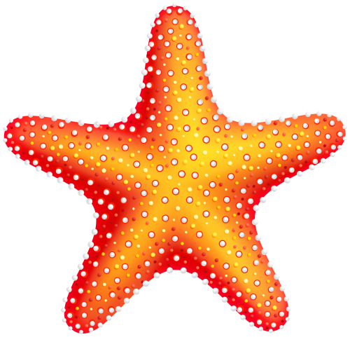 Starfish PNG Clip Art.