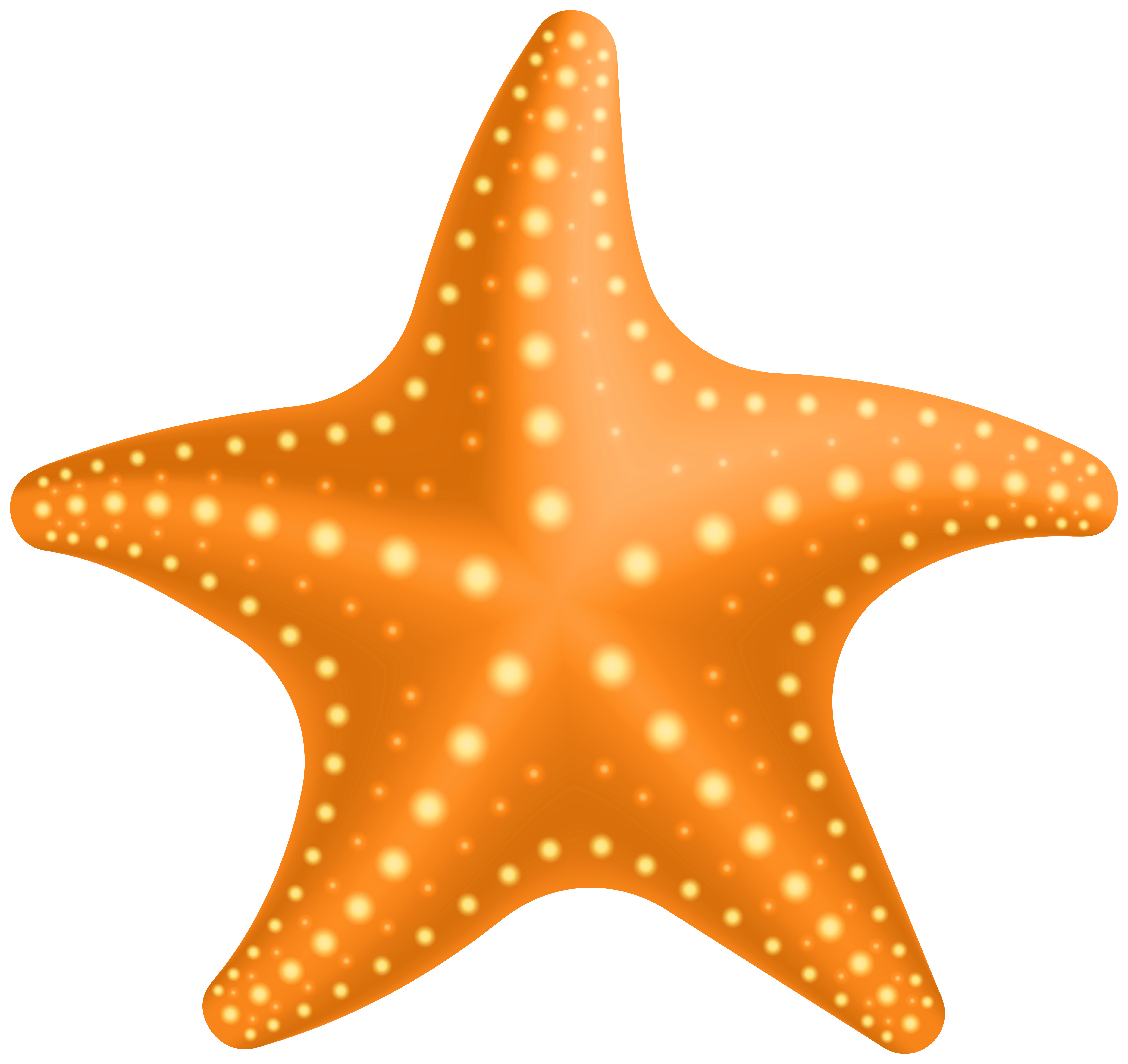 Starfish PNG Clipart.