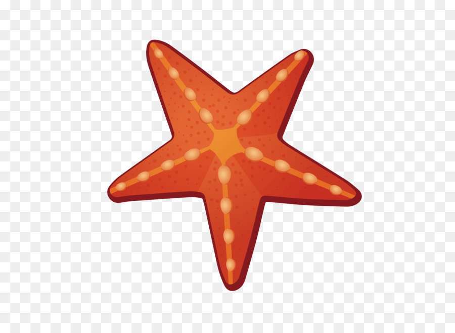 Christmas Star png download.