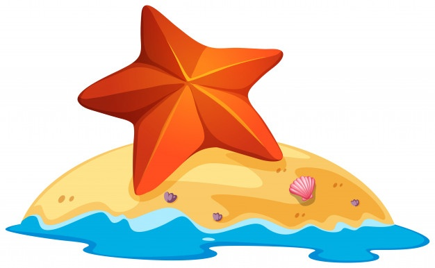 Starfish Vectors, Photos and PSD files.