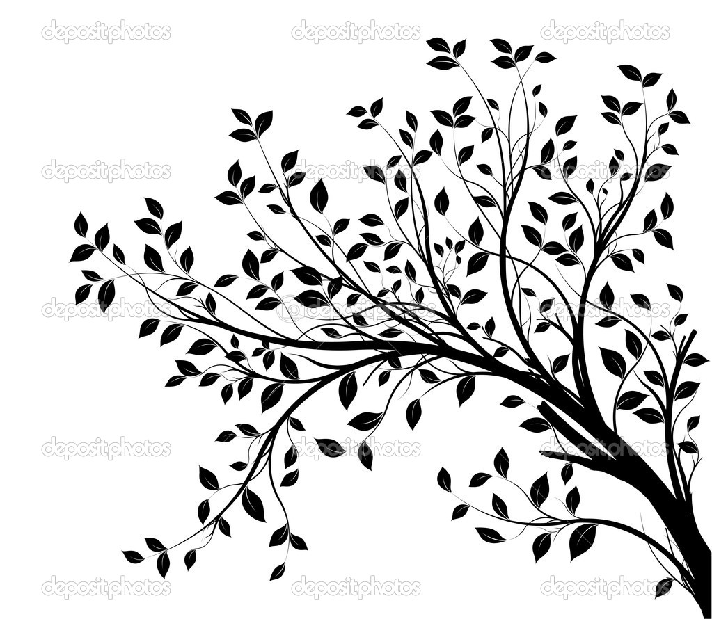 Vector tree branch, black silhouette — Stock Vector © Olivier26.