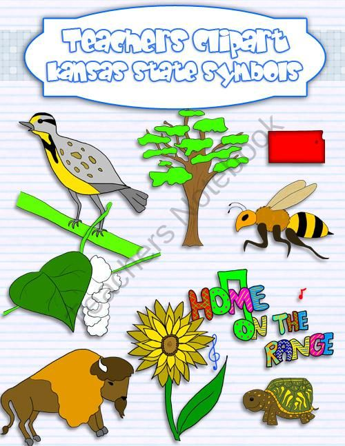 Kansas state symbols clipart product from Teacher.