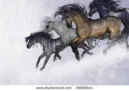 Four Horses Running Stock Photos, Royalty.