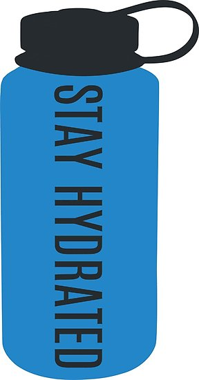 \'STAY HYDRATED\' Poster by anna c.