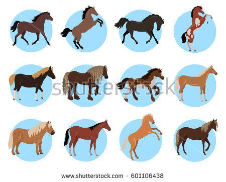 Horse Legs Stock Vectors, Images & Vector Art.