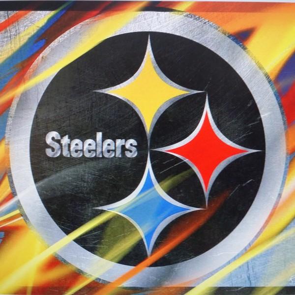 TS035 Steelers Colors.