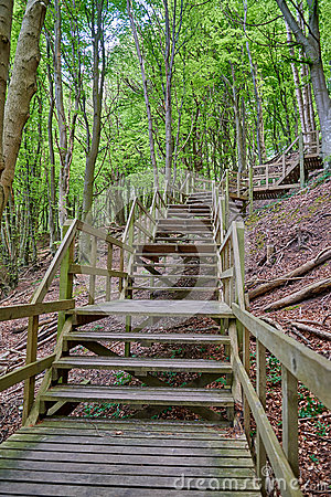 Steep Stairs To Woodland Bench Stock Photo.