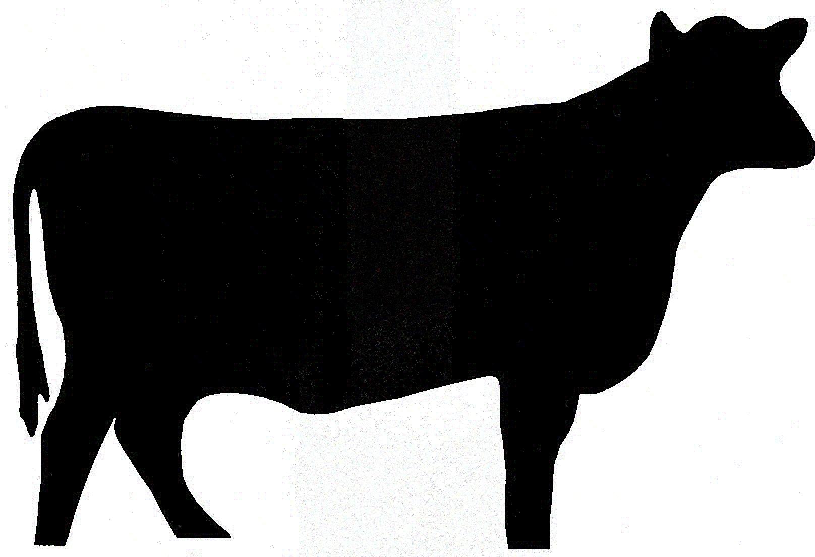 25+ Steer Clip Art.