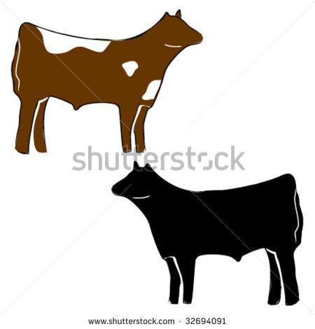 Steer Cow Stock Photos, Royalty.