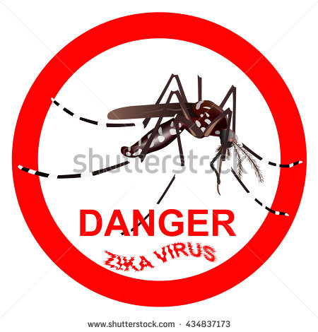 Tiger Mosquito Stock Photos, Royalty.