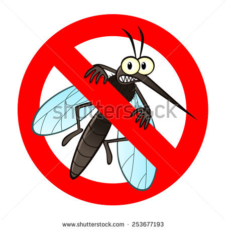 Mosquito Isolated Stock Photos, Royalty.