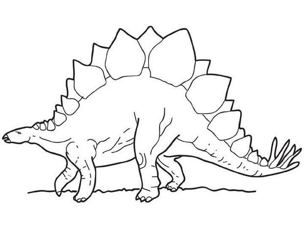 Stegosaurus Outline Clipart.
