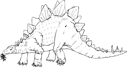 Stegosaurus Clipart Black And White.