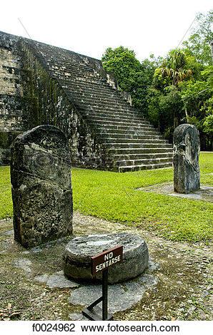 Stock Photo of Guatemala, Tikal National Park, steles f0024962.