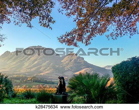 Stock Photo of Stellenbosch, South Africa k28475634.