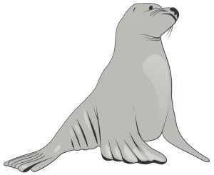 Steller Sea Lions Clip Art Download.