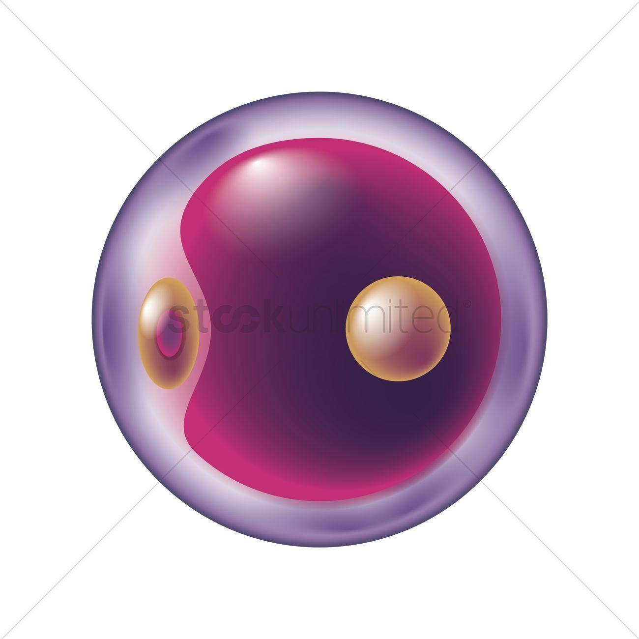 Stem cell clipart 6 » Clipart Portal.