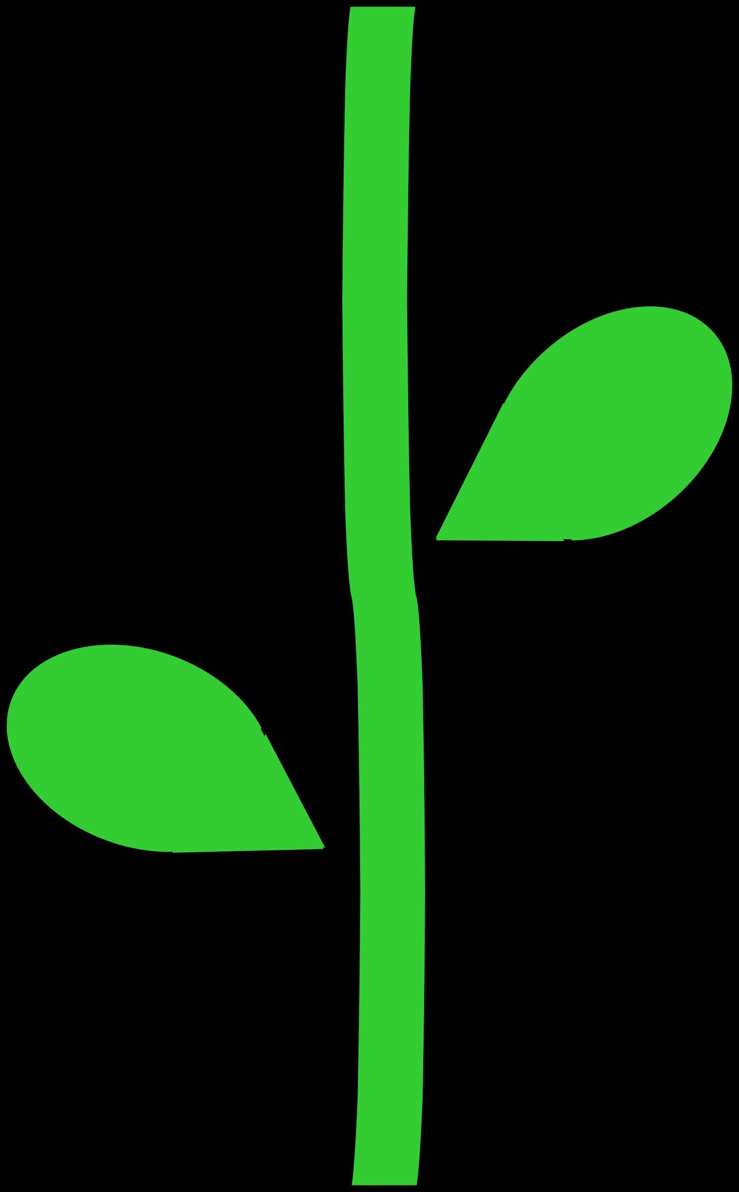 Flower Stem by @barnheartowl, A green flower stem, on.