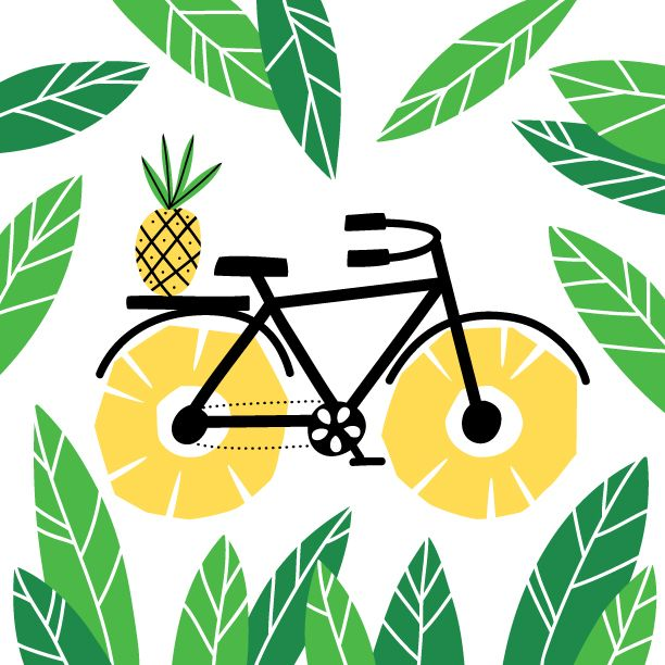1000+ ideas about Bicycle Illustration on Pinterest.