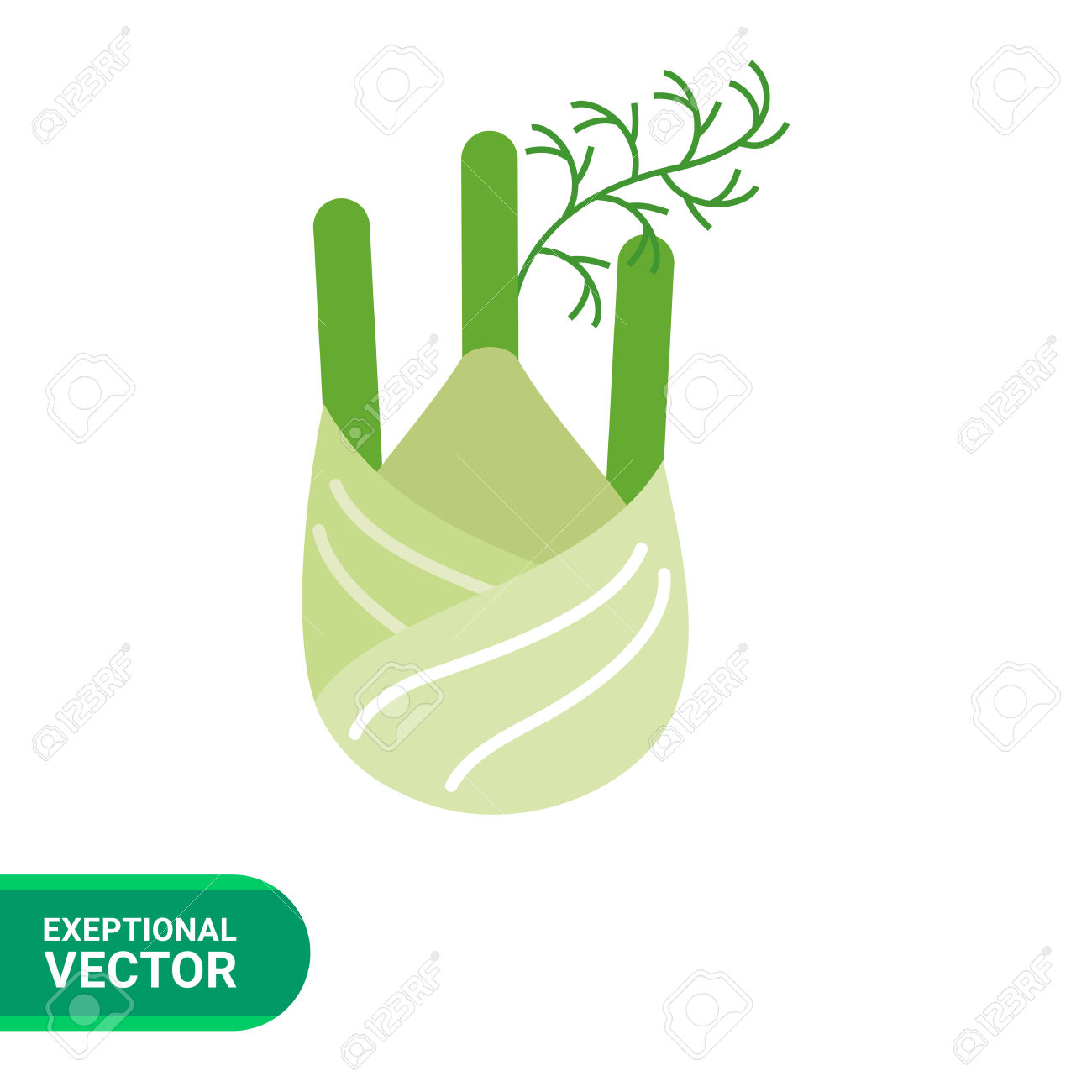Vector Icon Of Fennel Root With Stem Parts Royalty Free Cliparts.