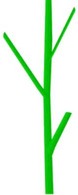 Watch more like Plant Stem Clip Art.