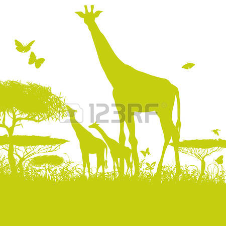 270 Grass Steppe Stock Vector Illustration And Royalty Free Grass.