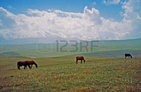 2,044 Steppe Stock Illustrations, Cliparts And Royalty Free Steppe.