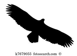 Steppe eagle Illustrations and Stock Art. 12 steppe eagle.