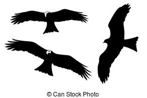 Steppe eagle Illustrations and Stock Art. 32 Steppe eagle.