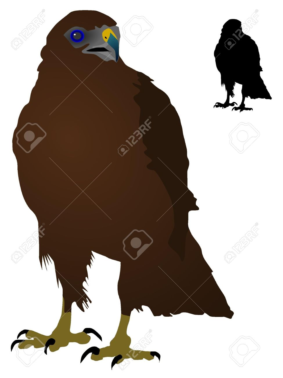 Vectors Steppe Eagle Royalty Free Cliparts, Vectors, And Stock.