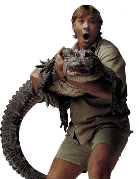 Rip Steve Irwin (PSD).
