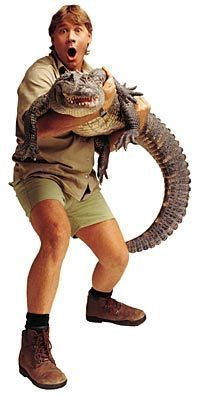 Lessons from Steve Irwin the Crocodile Hunter.
