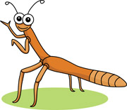 Showing post & media for Stick bug cartoon.