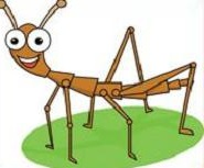 Free Walking Stick Insect Clipart.