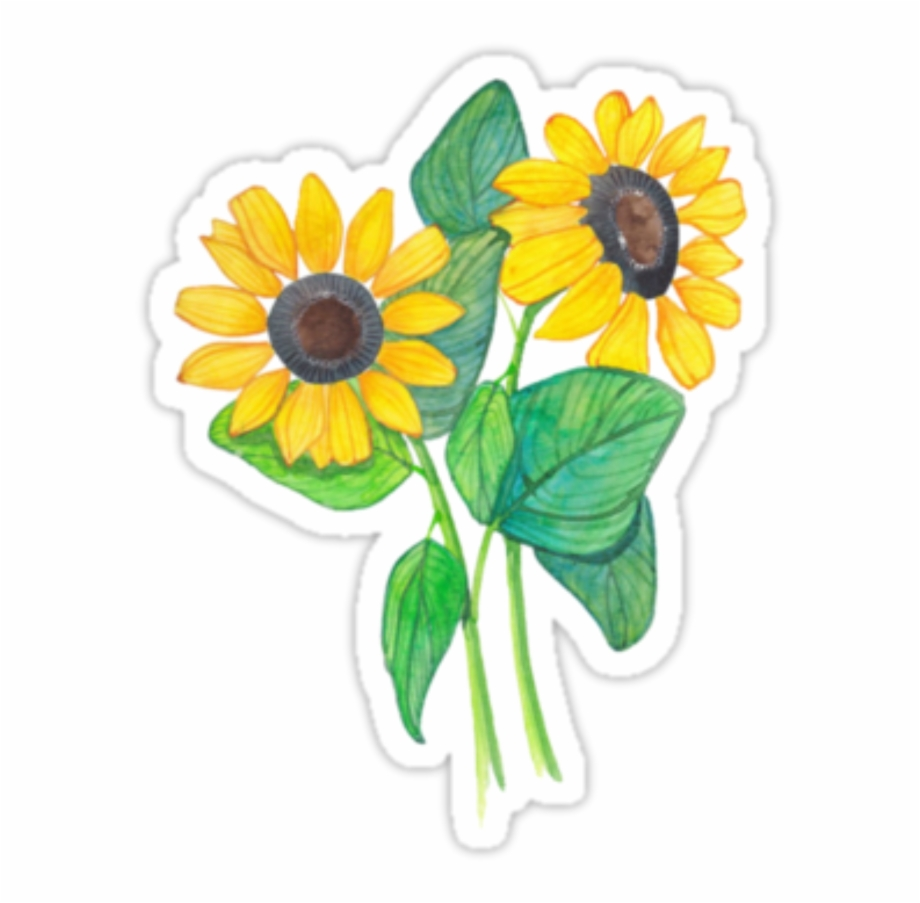 Tumblr Flowers Sticker Png Picsart Stickers Tumblr.