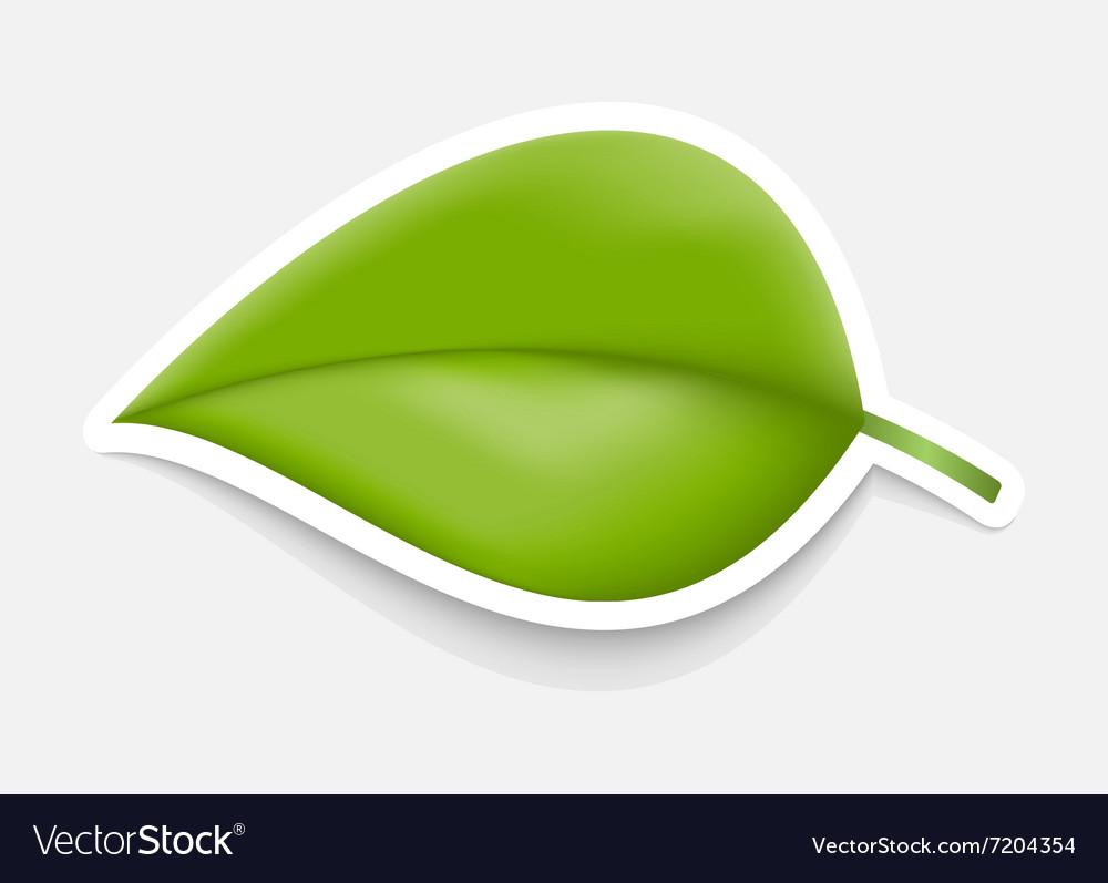 Green Leaf Sticker Design template.