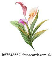 Stieglitz Clipart Vector Graphics. 13 stieglitz EPS clip art.